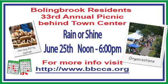 Bolingbrook Picnic graphic