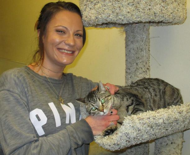 Adopted cat Sheba