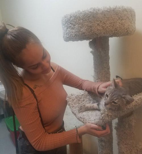 Cat Humphry