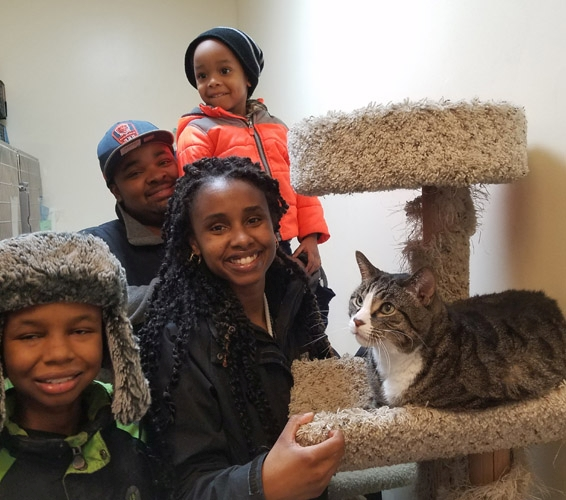 Cat with adopting family: Hector
